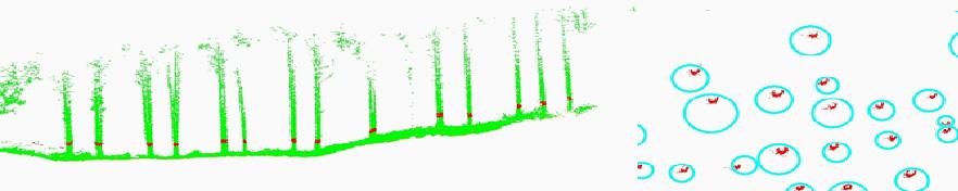 バックパックレーザによる胸高直径データの取得